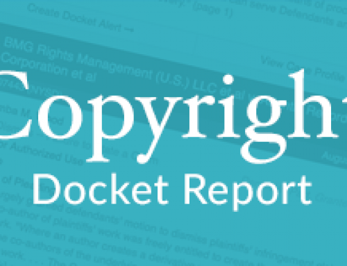 Watermark on Photograph Deemed Sufficient to Constitute Copyright Management Info Under DMCA